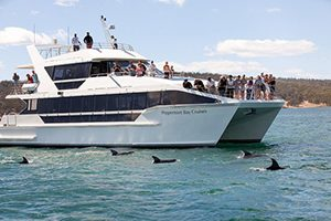 Peppermint bay cruises.jpg