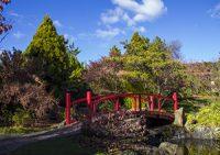 Royal Tasmanian Botanical Gardens.jpg